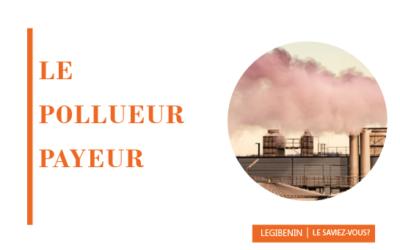 Pollueur-Payeur : principe, portée et application en droit béninois