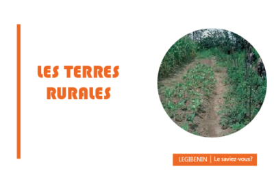 Acquérir des terres rurales au Bénin: quelles en sont les règles?